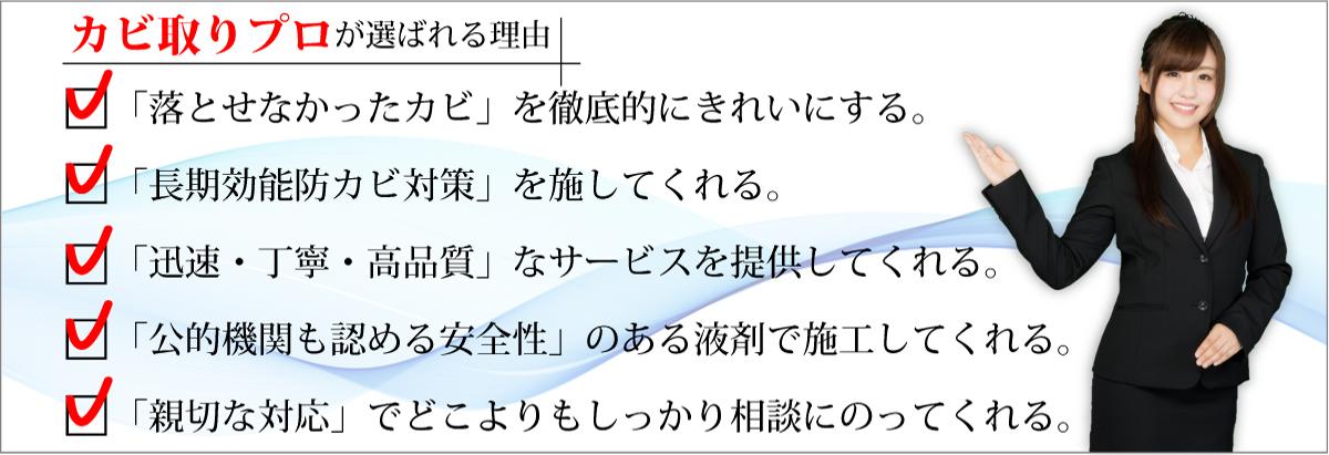 大阪のカビ取り防カビ専門業者,カビ取りプロの選ばれる理由