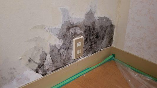 大阪カビ取りプロ:施工事例:壁施工前
