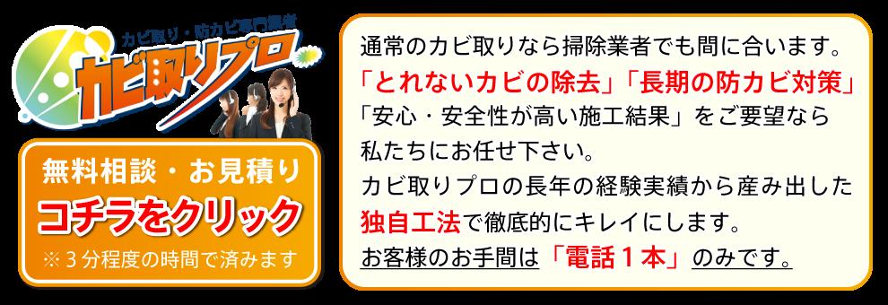 大阪カビ取りプロ ご依頼はコチラから→
